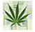 :weed1: